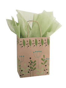 Eco-Friendly Gift Bags and Tissue