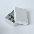 Jewelry box pin earring White
