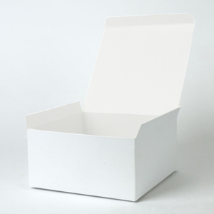 8x8x4 White 1pc Gift box