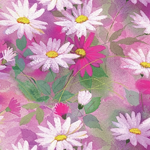 daisy dance all occasion gift wrap