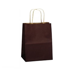 8 x 4 ¾ x 10½ Paper Shopping Bag Category