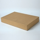 17x11x2.5  kraft apparel box