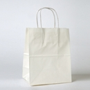 "white paper shopping bag 8-1/4"" x 4-3/4"" x 10-1/2"""