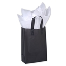 5.25x3.25x8.5 Color frost shopper