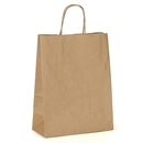 Imprinted Paper Shopping Bags 8.75x5.5x13.5
