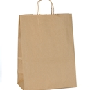Imprinted Paper Shopping Bags 13x7x17
