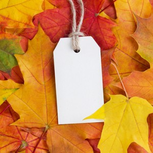 Autumn is here: Is your store ready?