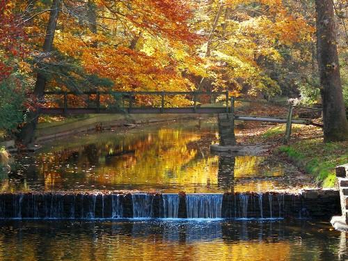 Creating rustic displays for fall